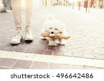 Stock photo small puppy dog walkers happy with her teddy bear 496642486