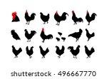 set of vector rooster... | Shutterstock .eps vector #496667770