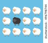 Black Sheep Between White Shee...