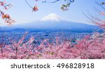 mountain fuji in spring  cherry ... | Shutterstock . vector #496828918