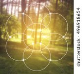 flower of life   the... | Shutterstock .eps vector #496918654