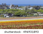 The Beautiful Flower Fields At...