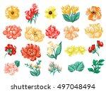 flower set | Shutterstock .eps vector #497048494