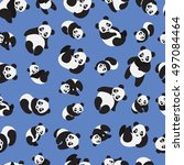 cute panda on blue background... | Shutterstock .eps vector #497084464