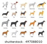 Dogs Breed Vector Flat Icons...