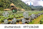 smart agriculture and internet... | Shutterstock . vector #497136268