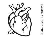 heart vector icon hand drawn... | Shutterstock .eps vector #497184910