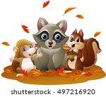 cartoon funny raccoon  hedgehog ... | Shutterstock . vector #497216920