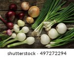 onions and garlic variety | Shutterstock . vector #497272294