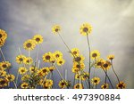 summer in the nature background | Shutterstock . vector #497390884