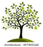 vector pear tree in two seasons ... | Shutterstock .eps vector #497402164