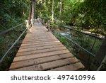 thanbok khoranee national park... | Shutterstock . vector #497410996