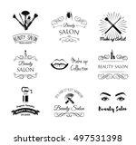 beauty salon design elements in ... | Shutterstock .eps vector #497531398