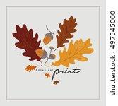autumn oak leaves and acorns....   Shutterstock .eps vector #497545000