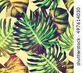 tropical jungle leaves ... | Shutterstock . vector #497614030