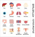 names of human organs and... | Shutterstock .eps vector #497687668