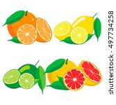 abstract vector illustration...   Shutterstock .eps vector #497734258