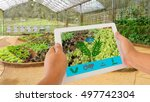 smart agriculture and internet... | Shutterstock . vector #497742304