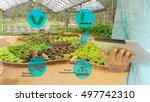 smart agriculture and internet... | Shutterstock . vector #497742310