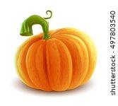 pumpkin illustration | Shutterstock .eps vector #497803540