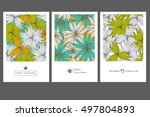 set of invitation cards with... | Shutterstock .eps vector #497804893