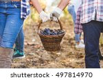 cropped shot of couple holding... | Shutterstock . vector #497814970