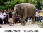 kandal province  cambodia 2014  ... | Shutterstock . vector #497822986