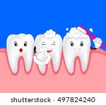 happy cute cartoon tooth and... | Shutterstock .eps vector #497824240