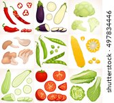 set of vegetables. different... | Shutterstock .eps vector #497834446