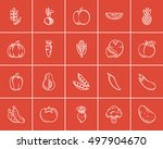 healthy food sketch icon set... | Shutterstock .eps vector #497904670