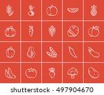 healthy food sketch icon set... | Shutterstock .eps vector #497904670