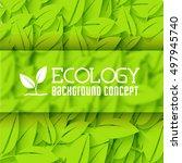 eco leaf background concept.... | Shutterstock .eps vector #497945740