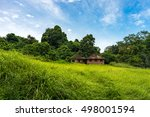 two old houses in green fresh... | Shutterstock . vector #498001594