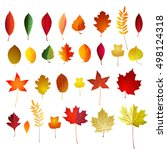 vector set of color autumn... | Shutterstock .eps vector #498124318