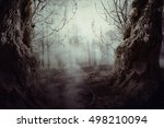 halloween night background with ... | Shutterstock . vector #498210094