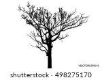Vector Of Tree  Dry Tree  Dead...