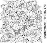 Poppy Flowers. Coloring Page...