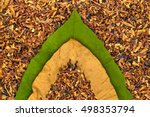 Dry And Green Tobacco  Leaf On...
