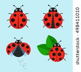 Cartoon Ladybug Vector Set...