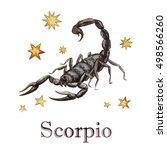 zodiac sign   scorpio.... | Shutterstock . vector #498566260