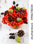 Small photo of Autumn fruits of forest on old rustic wooden background, bunch of red rowan, alder cone, green acorns, brown pine cones, elderberry