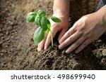 farming | Shutterstock . vector #498699940