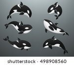 orca logotype set vector...