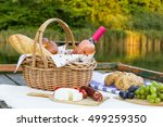 picnic basket on the lake with... | Shutterstock . vector #499259350