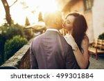 sparkle of evening sun hides...   Shutterstock . vector #499301884