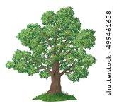 summer landscape  oak tree with ... | Shutterstock .eps vector #499461658