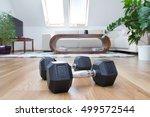 dumbbells in interior   Shutterstock . vector #499572544