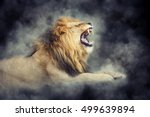 Close male lion in smoke on dark background