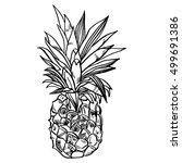 hand drawn set illustrations of ... | Shutterstock .eps vector #499691386