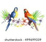 the parrot on a branch with... | Shutterstock . vector #499699339
